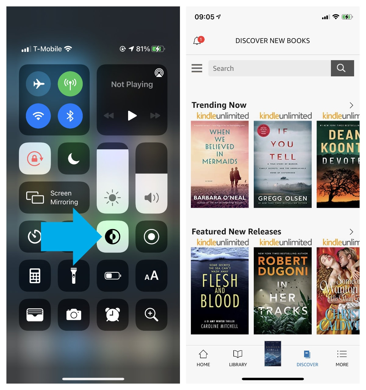 How to switch Library theme in Kindle app for iPhone iPad
